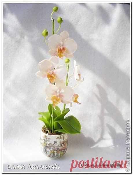Керамическая флористика. Видео по лепке орхидеи из полимерной глины.