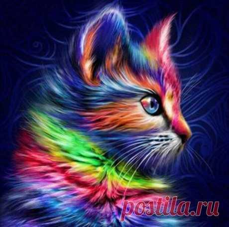 Кошки — одни из самых старых животных на планете. Но значит ли это, что их душа тоже не менялась? И что они видели зарождение жизни на планете, ее эволюцию и мутации? Возможно. Конечно, если у вас дома живет кошка, то вы уже знаете, что эти домашние питомцы являются удивительными созданиями. Но это