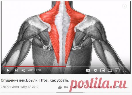 !!!Опущение век.Брыли .Птоз. Как убрать. - YouTube  !!! Зависимость проблем лица -опускание кожи лица вниз- с состоянием мышц спины, шеи. Причина - в опускании затылочной кости в следствие укороченности=напряжения трапицевидной и полуосистой мышц