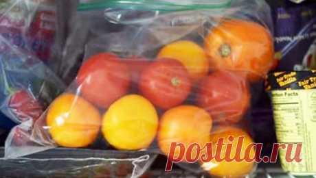 Как правильно заморозить помидоры… Помидоры являются популярным выбором среди садоводов, иногда даже слишком популярным. Очень часто мынеможем понять, как  унас выросло такой огромный урожай этих прекрасных продуктов. Ичтоже  сни…