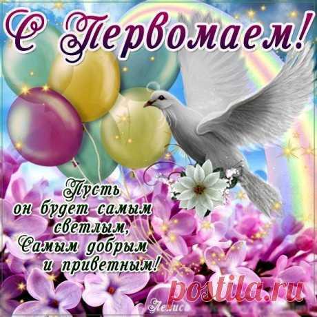Открытка - Поздравление с Первомаем на фоне голубки с цветами
