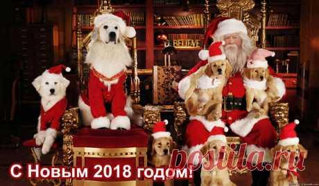 ГОРОСКОП НА ЯНВАРЬ 2018 ГОД ПО ЗНАКАМ ЗОДИАКА -