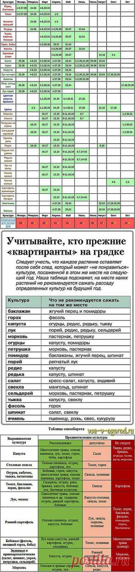 ТРИ ПОЛЕЗНЫХ ТАБЛИЦЫ ДЛЯ ОГОРОДНИКОВ.