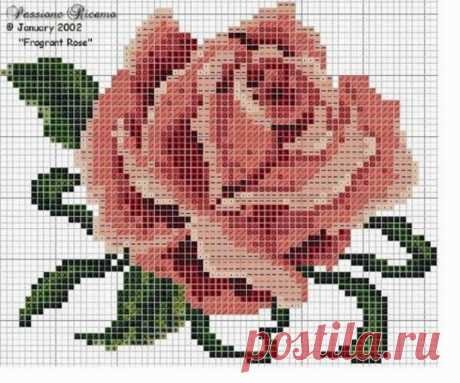 Идеи с жаккардом розы