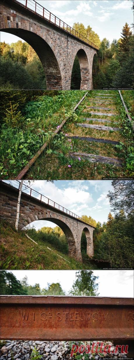 Красивейший заброшенный железнодорожный мост в Новгородской области. Почему он больше не используется?   Рекомендательная система Пульс Mail.ru