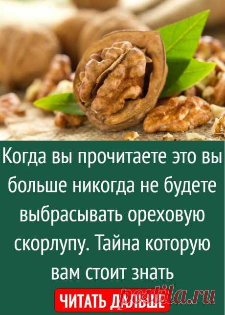 Когда вы прочитаете это вы больше никогда не будете выбрасывать ореховую скорлупу. Тайна которую вам стоит знать
