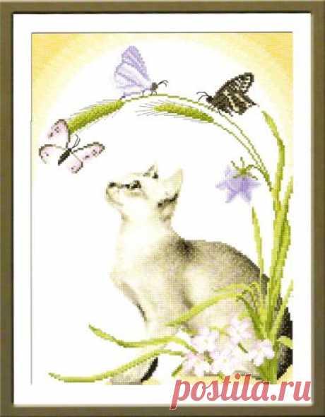 Летний полдень - Кошки - Фауна - СХЕМЫ - ВЫШИВКА КРЕСТОМ