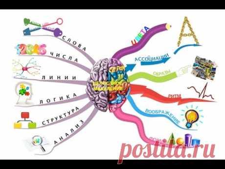 Как научить мозг учиться. Татьяна Черниговская - YouTube