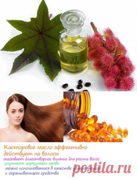 Лечебные растительные масла. Касторовое масло — Бабушкины секретики