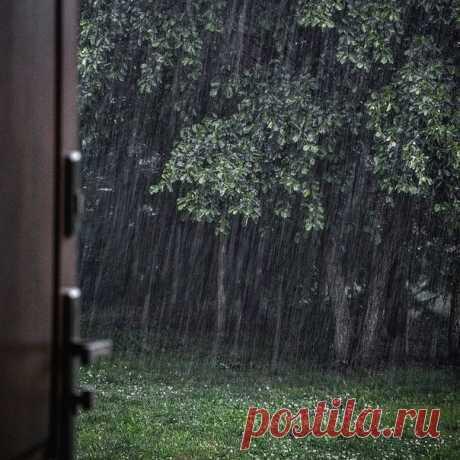 И вообще, больше всего на свете я люблю тихие вечера, когда на улице льет вовсю дождь.