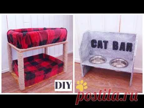 DIY КОШКИН ДОМ И CAT BAR 🐾 Как сделать лежак для кота/кошки 🐈 Подставка под миски своими руками