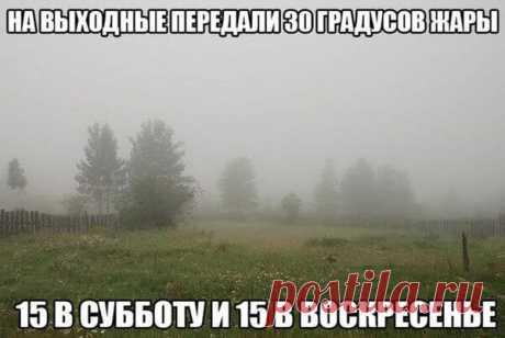 Приколы про холодное лето - (99 картинок и фото)