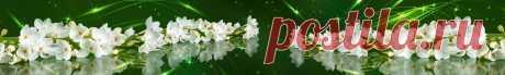 Скинали белые цветы и зеленая абстракция