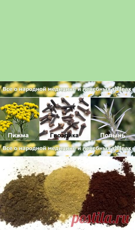 Тройчатка от паразитов - рецепт приготовления и дозы
