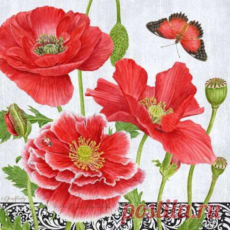 Художница Jane Shasky. Цветы.