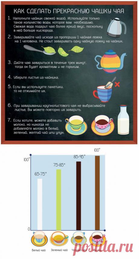 15 советов как правильно пить чай — Полезные советы