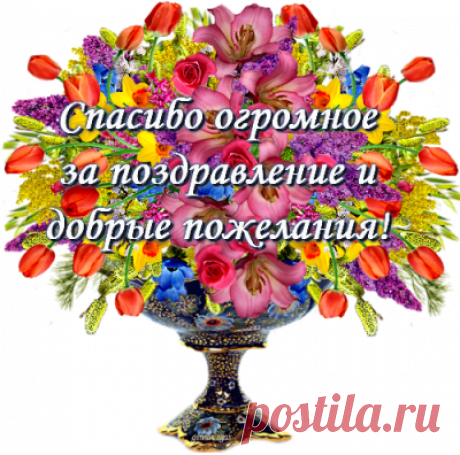 Профиль пользователя Валентина (Валентина)