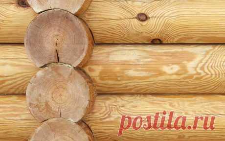 Как построить деревянный сруб дома - сборка, усадка, защита