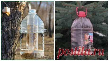 5 вариантов использования пластиковых бутылок в огороде. Часть 1 | Урожайный огород | Яндекс Дзен