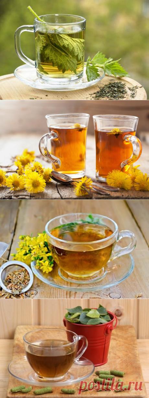 Как укрепить иммунитет и снизить тревожные симптомы при помощи травяного чая - Женский журнал - медиаплатформа МирТесен