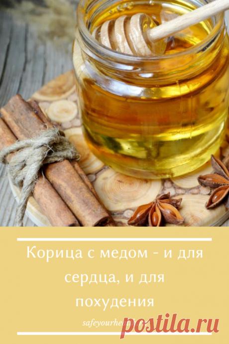 Корица с медом: польза и вред, отзывы, рецепты для похудения
