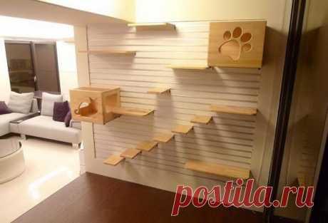 Удобная мебель для домашних животных. Часть 1   Промышленный дизайн   Предметы быта