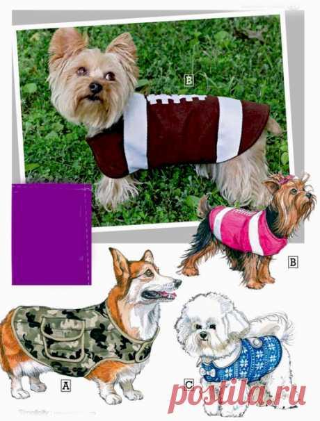 Одежда для собак. Шьем сами.