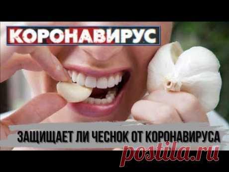 Защищает ли ЧЕСНОК ОТ КОРОНАВИРУСА Укрепление иммунитета в период коронавирусной инфекции - YouTube