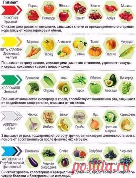 Польза продуктов в зависимости от цвета — Полезные советы