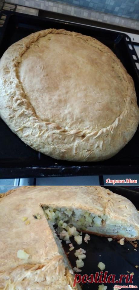 Как я пеку пирог с картофелем и фаршем - Страна Мам