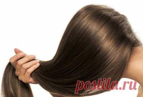 Сильно выпадают волосы - что делать: основные причины и эффективное лечение