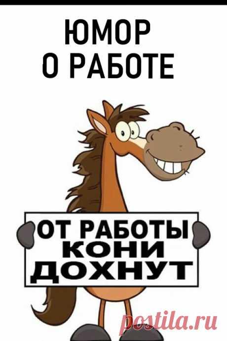 Юмор о работе и о тех кто пашет как лошадь: анекдоты, веселые картинки #юмор #веселыекартинки