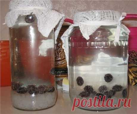 РИСОВЫЙ КВАС ДЛЯ СУСТАВОВ Есть рецепт, прекрасно излечивает от остеохондроза , да еще и соли изгоняет из суставов. Лечение рисовым квасом! В литр кипяченной и охлажденной воды нужно засыпать 4 ст. л. риса (не рисовой сечки!), 3 ст. л. сахара и 5 изюмин черных. Квас настаивать 4 дня, хорошо размешав сахар. Если стоит жара, хв