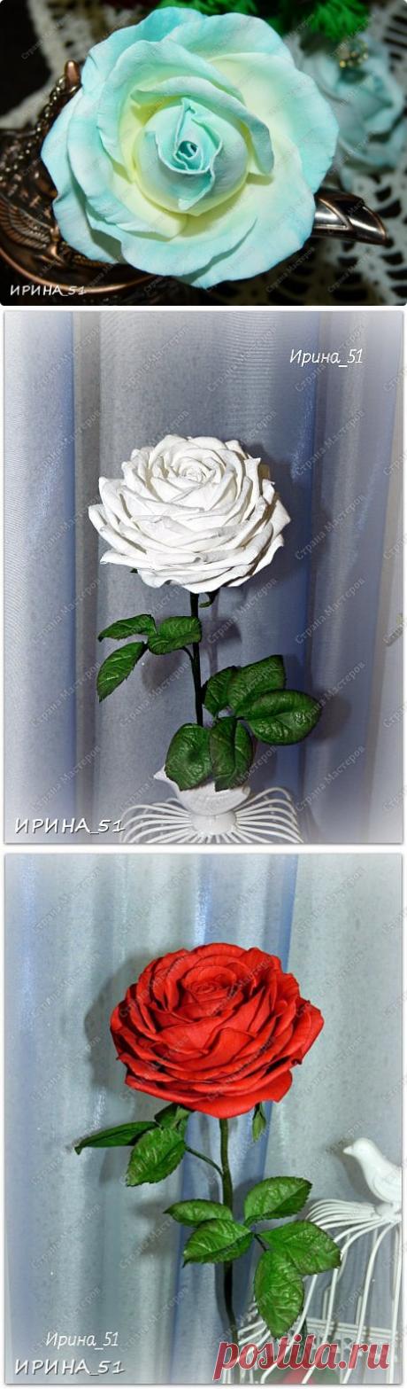 Простая роза с тонировкой сухой пастелью. Мастер-класс.