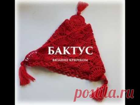 БАКТУС-ШАЛЬ КРЮЧКОМ