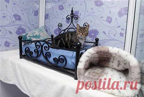 Роскошный отель для кошек..