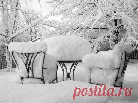 (13) ГУГЛЯТА+ Зима учит безмятежности и неспешности. Каждая снежинка — учитель изящества.   Мария Берестова