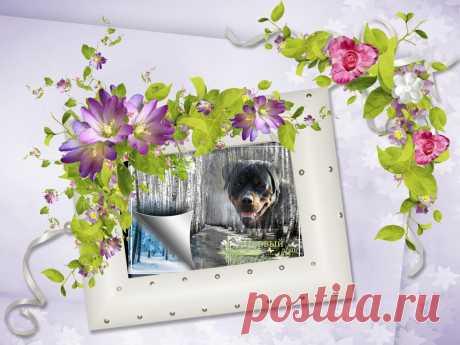 Романтическая рамка для фотошопа - Прекрасные воспоминания » Фото в рамку - Вставить фото в рамку онлайн!