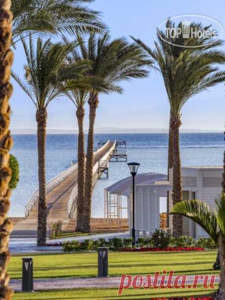 Фото и видео отеля Rixos Premium Seagate  5*. Рейтинг отелей и гостиниц мира - TopHotels. Фото и видео отеля Rixos Premium Seagate  5*.
