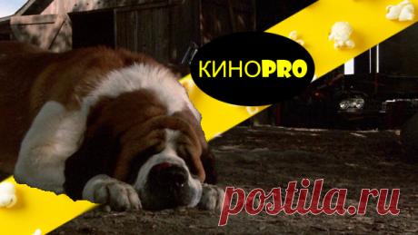 3 фильма, которые не стоит смотреть перед сном | КИНОPRO | Яндекс Дзен
