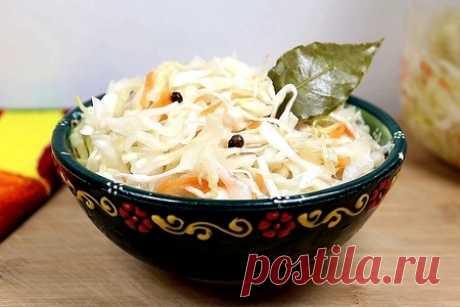 Соленья и маринады - 668 рецептов с фото и видео