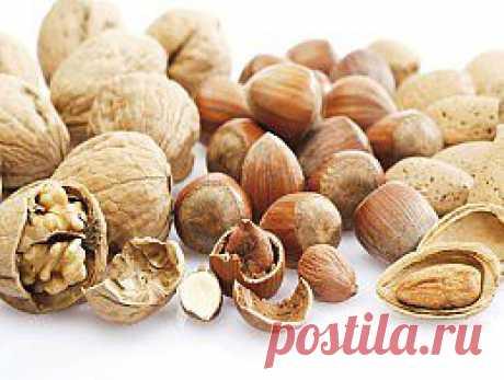 Как выбирать и хранить орехи. Полезные советы - Кухня - Аргументы и Факты