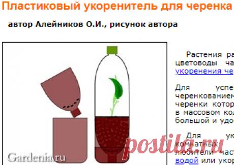 Пластиковый укоренитель для черенка