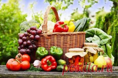 """Сегодня 01 октября отмечается """"Всемирный день вегетарианства"""""""