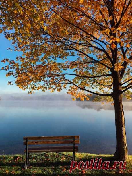 «С первым осенним холодком жизнь начнется сначала». - Фрэнсис Скотт Фицджеральд, «Великий Гэтсби»
