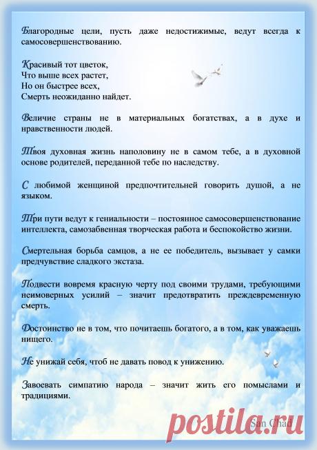 Афоризмы Черных Александра Дмитриевича (псевд. Сан Чад). Стр.11.