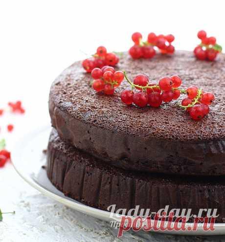Шоколадный бисквит, рецепт с фото пошагово, с какао в духовке | Простые рецепты с фото