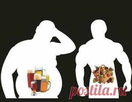 Время переваривания пищи: