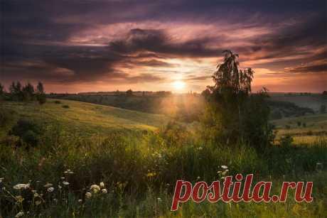 Фотография Теплый летний вечер из раздела пейзаж №6884113 - фото.сайт - Photosight.ru