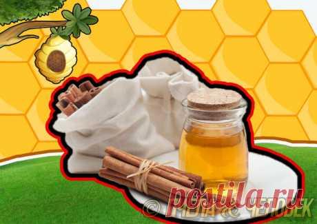 Почему мед в сочетании с корицей способствуют выведению холестерина   Пчела & Человек   Яндекс Дзен